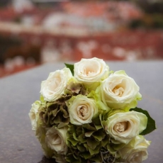 cream-green-roses-hydrangea-wedding-bouquet