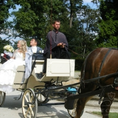 Wedding-carriage_Hluboka-nad-Vltavou