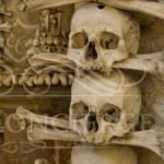 Excursion-to-Kutna-Hora-bones